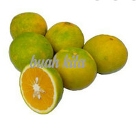 buah jeruk baby java