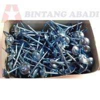 Paku Payung Seng 3 Inchi (7 cm) Asbes Atap Harga Per Kg Bahan Galvanis
