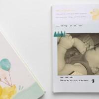 jual Dear Baby - Pregnancy & Baby Journal, Jurnal Kehamilan, Buku Bayi