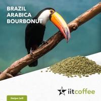 Arabica Green Beans - Brazil Bourbonut Natural 1 Kg