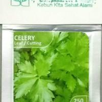 Bibit Import Celery Seledri Daun