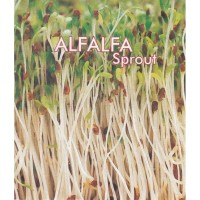 Benih Alfafa Sprout 5 gr (Mikrogreen, Microgreens) kemasan repack