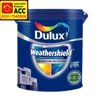 Cat Dulux Weathershield Tinting 20liter (25kg)