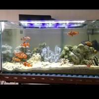 lampu aquarium aquascape ikan hias led yamano p600 original