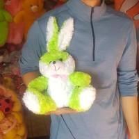 Boneka Hewan Binatang Bugs Bunny Rabbit Kelinci HIJAU PUTIH