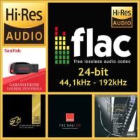 Flac 24-bit Audiophile Test CD & FD 32GB - Digital Audio - File Flac