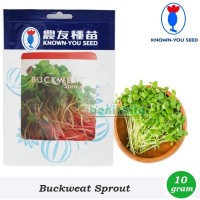 Benih-Bibit Microgreens/Sprout Buckweat (Known You Seed)