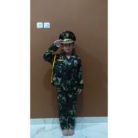 Deni Stelan Seragam Profesi TNI Tentara Abri Baju Anak Laki-Laki 1-4