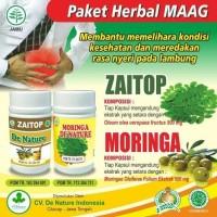 Obat Herbal Maag Asam Lambung Dan Infeksi Lambung