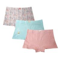 Young Hearts Princess Ballerina Panty Pack Y04-000497