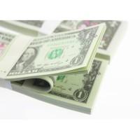 New Mainan Anak: Uang Palsu Dollar untuk Mainan / Belajar