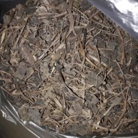 Daun Binahong Kering / Obat Herbal / Obat Diabetes (1kg)