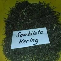 Daun Sambiloto Kering (1kg) /Obat Herbal Kencing Manis /Herbal Stamina