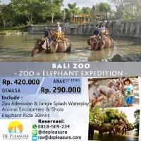 Bali Zoo - Elephant Expedition untuk Dewasa