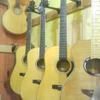 Gitar Akustik Elektrik Samick Gregbennett GD 310 EQ301