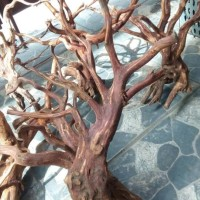 HOT SALE Aquascape kayu rasamala size L grade A Terjamin