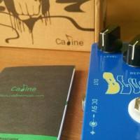 Caline Blue Ocean Delay Pedal Efek Gitar Stompbox (NEW)