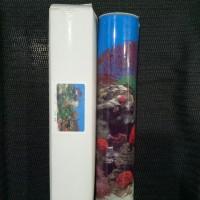 Background Aquarium Tinggi 40cm 1 roll 9001 Coral