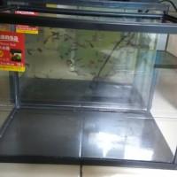 Aquarium khansa ikan cupang guppy reptil ukuran size M