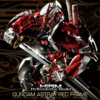 Hi Resolution Gundam Astray Red Frame