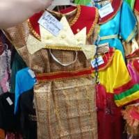 Baju Adat Palembang anak Perempuan kostum karnaval kartinian