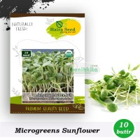 Benih-Bibit Microgreens Sunflower Black Oil Organik (Haira Seed)