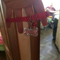 Bandul liontin kalung Nama untuk Kalung Anjing dan Kucing Bandul ONLY