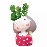 Aolvo Dream Girl Succulent Pot 1