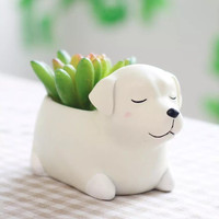 Aolvo Doggy Shaped Succulent Pot 1