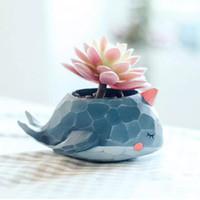 Aolvo Animal Succulent Pot 3