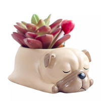 Aolvo Doggy Shaped Succulent Pot 2