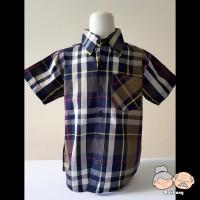Baju Kemeja Anak Cowok [Code : 9280] - 16, Biru