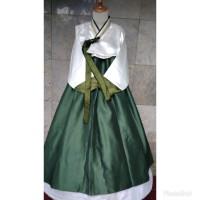 hanbok baju adat tradisional korea hambok hanbook mar05