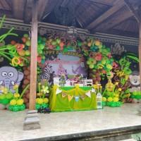 paket ulang tahun thema zoo dekorasi balon dan mc badut bali