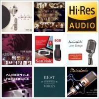 Kompilasi Lagu Audiophile MP3 320kb/s + FDD Sandisk 8GB