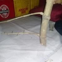 Bambu Petuk Asli Barang Antik