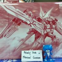 MG Astray Red Dragon / MG Gundam Astray Red Dragon Premium Bandai