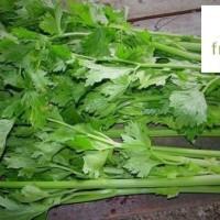 Daun Seledri Lokal 500 gram - FreshMart