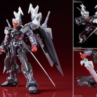 High Resolution Model 1/100 Gundam Astray Noir