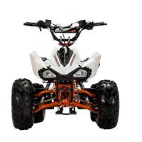 ATV KECIL MURAH VIAR RAZOR 100 SP (JABAR)