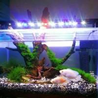 lampu led aquaspace