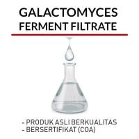 Galactomyces Ferment Filtrate 10ml / Bahan Kosmetik