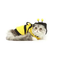 Baju Kucing Anjing Model Lebah Kostum Cat Dog Pet Hoodie Costum