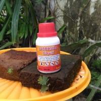 Latoxida Liquid 100ml pembasmi racun anti lalat kecoa semut rayap