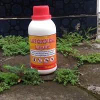 Latoxida Liquid 250ml pembunuh racun anti lalat kecoa semut rayap