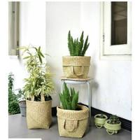 Bakul Purun, Keranjang Purun, Bakul Pasar, cover pot diameter 30cm