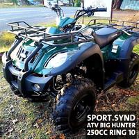 MOTOR ATV ADVENTURE 250 CC BAN RING 10 GARANSI 1 TAHUN