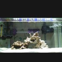 Lampu led yamano p800 70-80cm 12 watt aquarium / yamano p 800 70-80cm