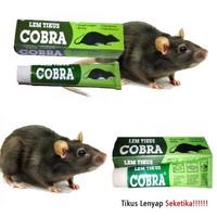 Lem Tikus Cobra Lem Perekat Tikus