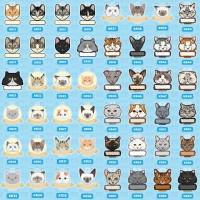 kalung kucing / kalung kucing custom / kalung anjing custom / bandul